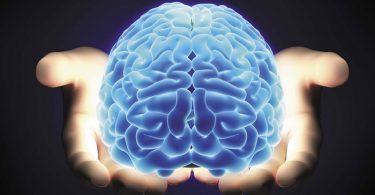 Curso online de Neuropsicologia