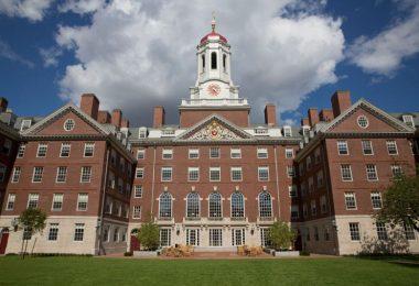 Cursos online de Harvard